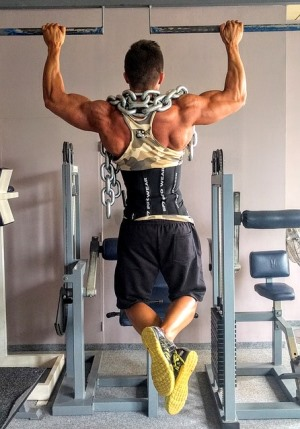 pull-up muscles - lats